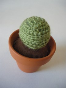 Woolly Cactus - Round