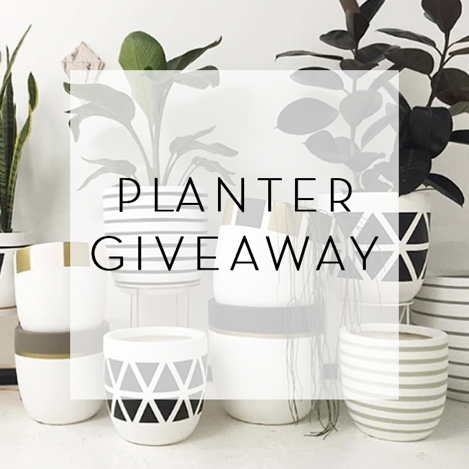 Design Twins Giveaway