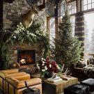7 Christmas Tree Inspirations + Tree Guide