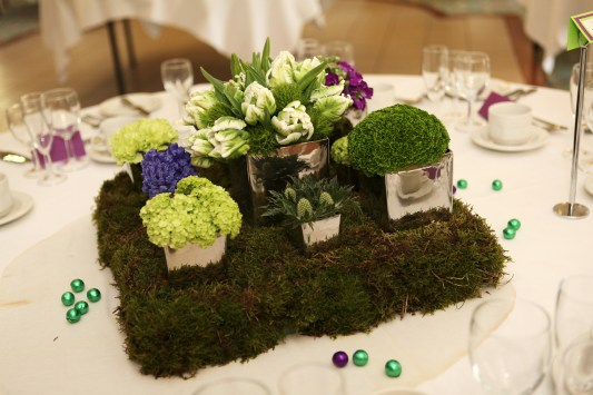 ...or compact cut flowers in a collection of cubes