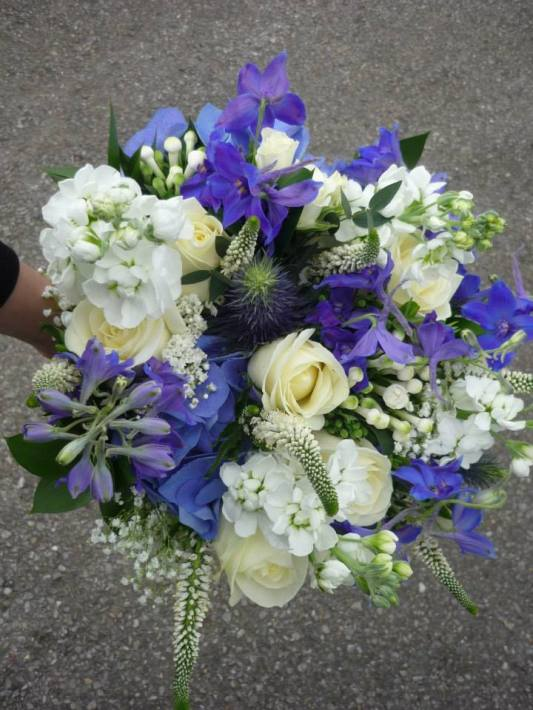 An eclectic mix of textures, with blue thistle and delphinium 'Blue Bee'