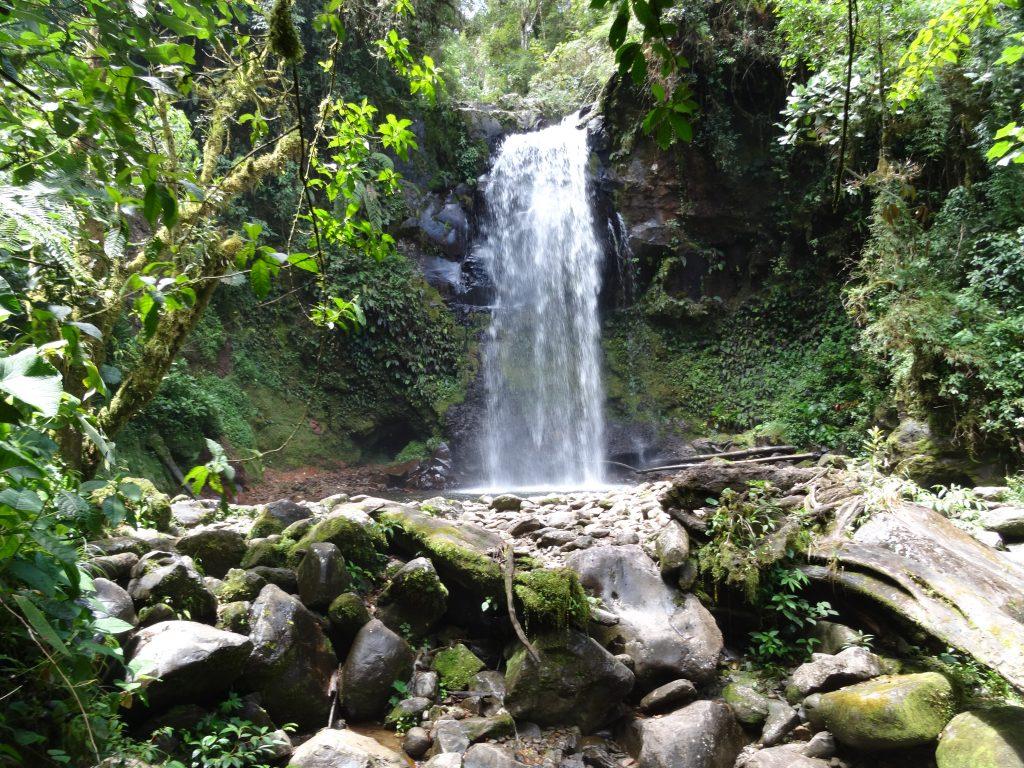 A waterfall in Panama