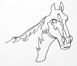 line drawing continuous contour sketch drawings simple horse artists cool techniques exercise lines thevirtualinstructor pen artist type subject fine sketches