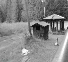 Skunk Train 320201546