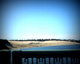 Great Dunes of Oregon 318201503