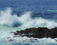 Point Cabrillo 321201509