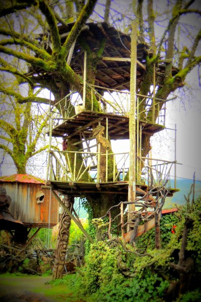 Crazy Treehouse: Top 20% award for the day of 1/26/16...