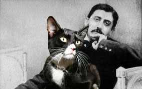 Proust's cat considering his next art exhibition