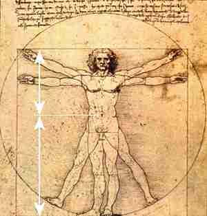 Leonardo's Golden Mean