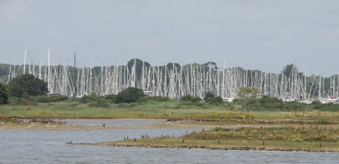 Looking back across Normandy Marsh to the Yacht Haven
