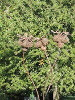 pinetum-trail