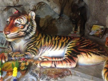 the tiger located in the cave