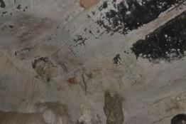 cave paintings-nikon