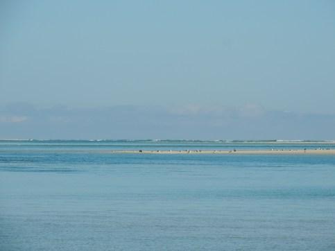 Atlantic Ocean looks lively