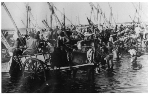 Unloading the fishing by horse and cart