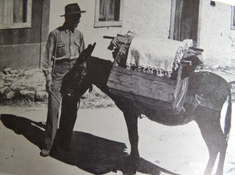 Illustration of an itinerant vendor taken from Dan Stanislawski's 'Portugal's Other Kingdom - The Algarve'