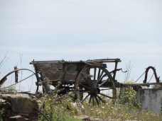 Visit my Boa Vista walk for more photographs of abandoned carts