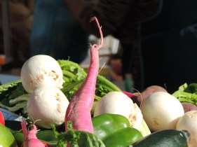 More turnips, and I think radish