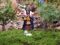 A shepherd!