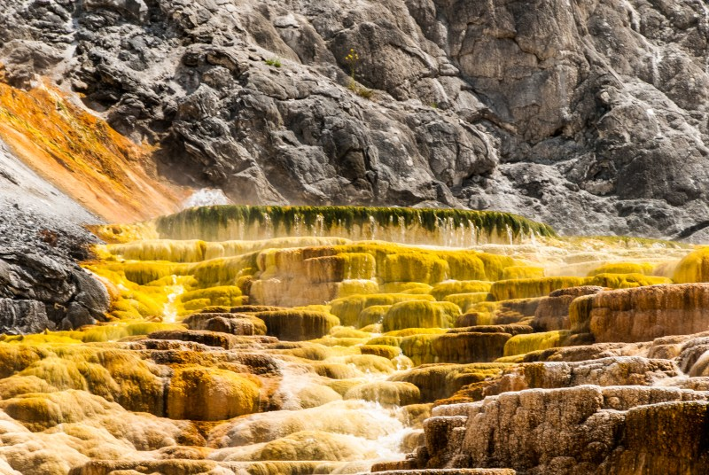 Terrace at Mammoth Hot Springs, Yellowstone National Park