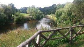 The Weir Garden, England