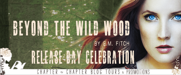 Beyond the Wild Wood release day banner