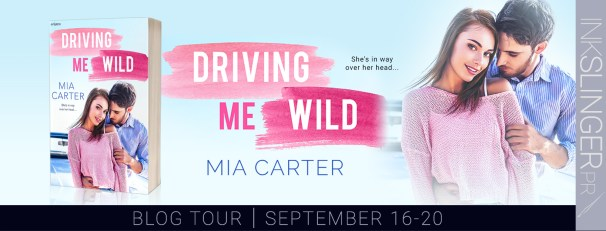 Driving Me Wild tour banner
