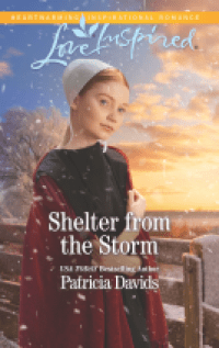 Shelter From the Storm cover