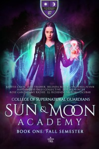 Sun & Moon Academy cover