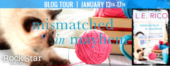 Mismatched in Mayhem blog tour banner