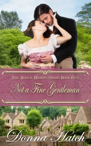 Not a Fine Gentleman cover