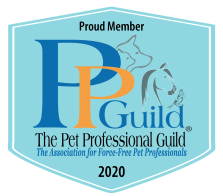 PPG Member Badge 2020_blue with tag