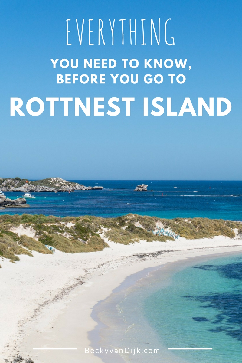 Everything You Need To Know Before You Go To Rottnest Island