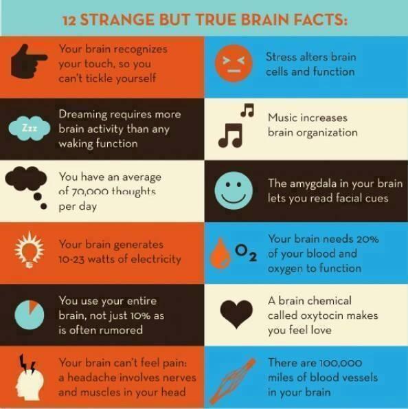 12 strange but true