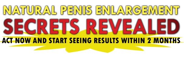 Pe-Penis-Enlargement-Bible-enlarge-size-increase-natural-no-extender-no-method-becoming-alpha-male
