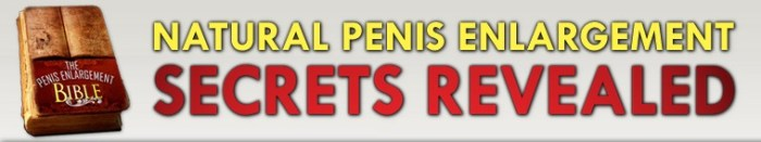 Penis-Enlargement-Bible-Pe-Enlargement-Bible-Pe-Bible-Secrets-Revealed-Review-Results-How-it-Works-Becoming-Alpha-Male
