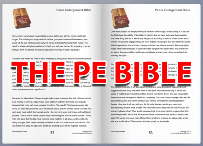 Penis-Enlargement-Natural-PE-Enlargement-Bible-Pe-Bible-Grow-Inches-My-Results-Consumers-Review-Not-Get-Bigger-Pill-Instant-Download-Becoming-Alpha-Male