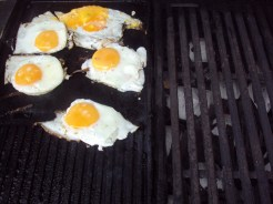First time I'd ever seen eggs cooked on a bbq like this