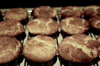 Baking snickerdoodles (they don't exist here)