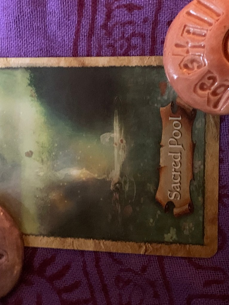 Card forty seven of enchanted map deck: the sacred pool