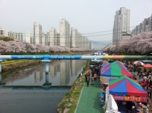 oncheoncheon food tents