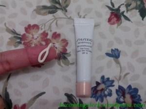 shiseidowrinkle2