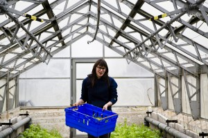 Alice Holden, Organic Food – Allotments. Photo by Antony and Harry