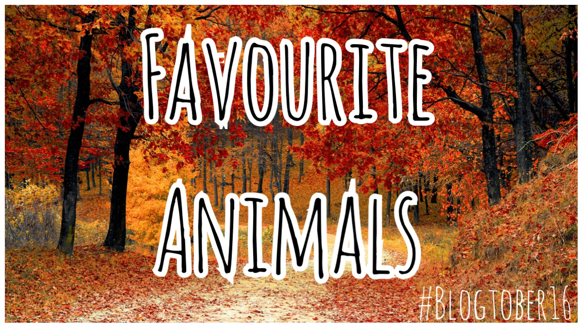 Favourite Animals