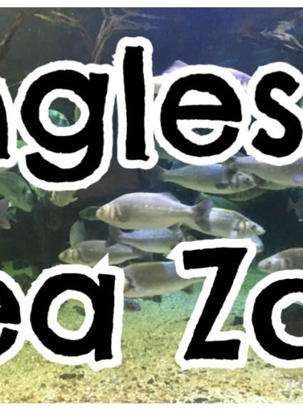 Anglesey Sea Zoo – Brynsiencyn
