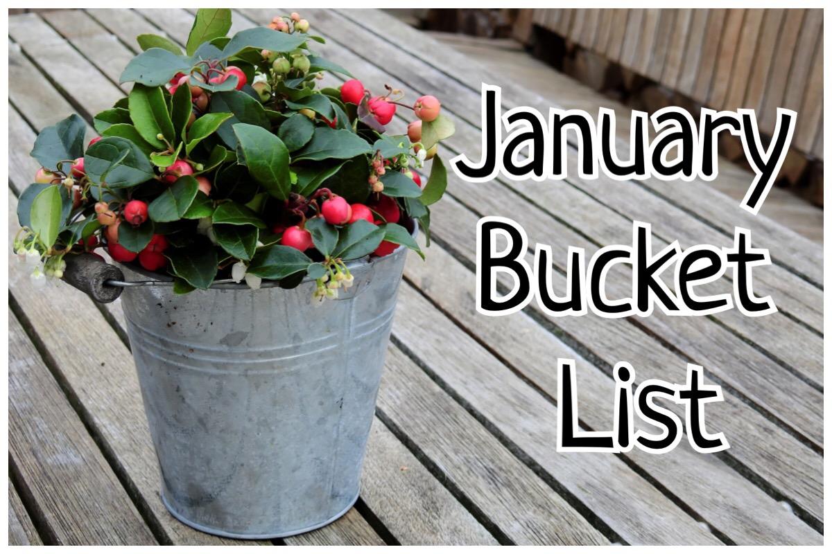 January Bucket List