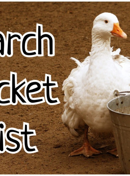 Bucket List – March