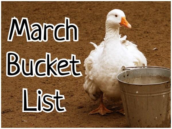 March Bucket List