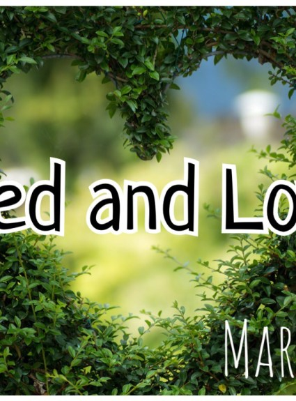 Liked and Loved – March 2017