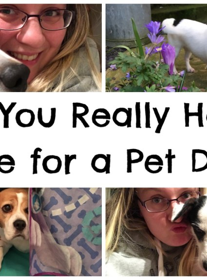 Do You Really Have The Time For A Pet Dog?